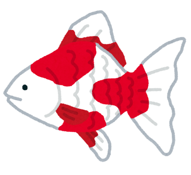 fish_kingyo2.png