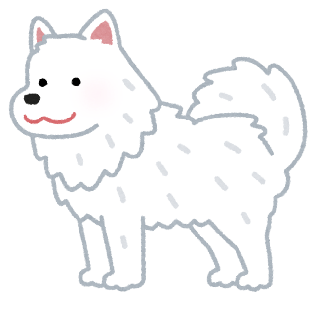 dog_samoyed.png